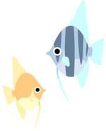Enzelfish